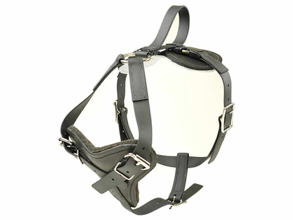 BioThane All Weather Dog Harness with Quick Release RedLine K9 (Medium)
