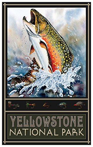 Yellowstone National Park Brook Trout Travel Art Print Poster by Dave Bartholet (12
