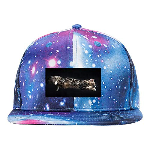 Leaping Cat - A Leaping Cat Men's and Women's 3D Print Adjustable Starry Baseball Cap Blue