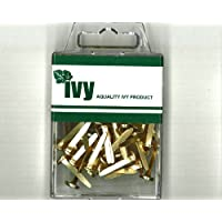 Ivy Stationery - 19mm Brassed Paper Fasteners - Pack of 50 - 8mm Head