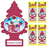 Automotive : Little Trees auto air freshener, Sunberry Cooler, 6-Packs (4 Count)