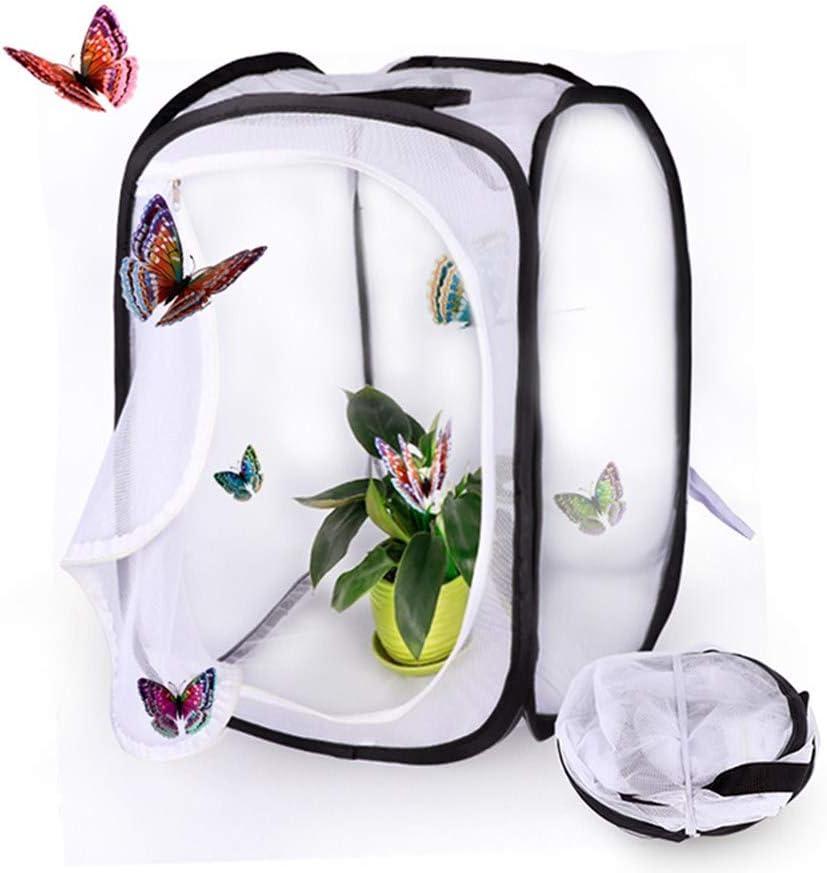 Faltbares Insektennetz F/üR Kinder Schmetterlingsfarm,Netz Schmetterlingsbeobachtungsk/äFig,30 * 30 * 30cm //Schwarz Pop-Up Schmetterlinge Z/üChten Insekten Aufzucht GHTYN Schmetterling K/äFig