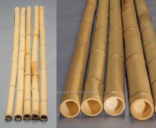 Bambus Discount bambusrohre moso gebleicht durch 8 9cm länge 200cm amazon de