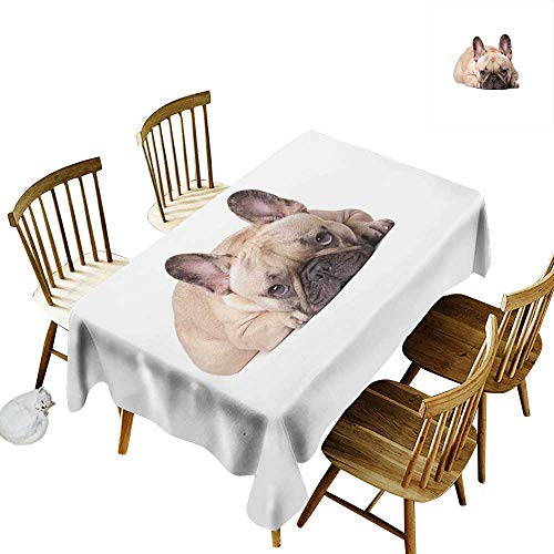 Small Rectangular Tablecloth W52 x L70 Bulldog Canine in a Funny Pose Darling Domestic Pet Photo for Animal Lovers Sand Brown Pale Pink Black Suitable for Traveling Outdoors Family Restaurant Coffee