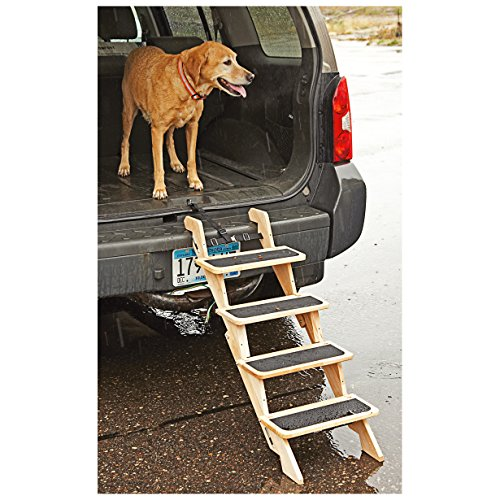 Kurgo 813146011225 Up Pup Step