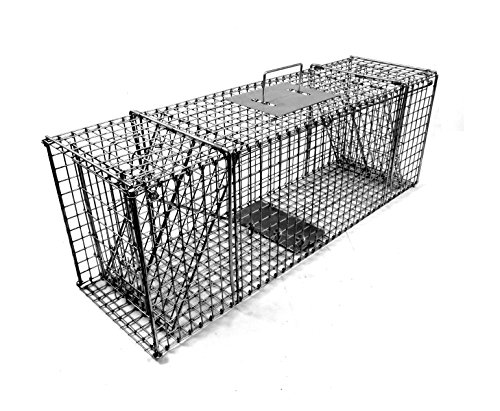 Model 207.3 - Tomahawk Collapsible Double Door Raccoon Trap by Tomahawk Live Trap