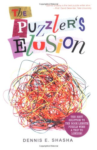 the-puzzlers-elusion-a-tale-of-fraud-pursuit-and-the-art-of-logic