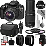 Canon EOS Rebel T6 Digital SLR Camera Kit w/ EF-S 18-55mm f/3.5-5.6 IS II and 75-300mm f/4-5.6 III Zoom Lens + 0.43x Super Wide Angle Macro + 2.2x Telephoto + 64GB Memory + Flash + Bag + Filter Bundle