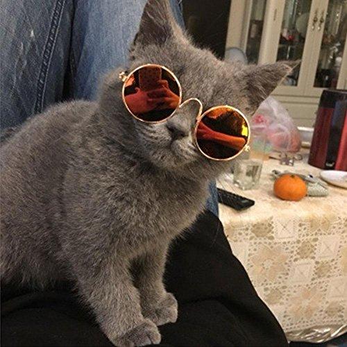 de Colorido UV Perro de Metal para Princesa o para Pequeños Chihuahua Circulares Clásicas Gafas Protectoras FOONEE Gato Gafas de de Perros Sol Sol Gatos xwqIgFY67A