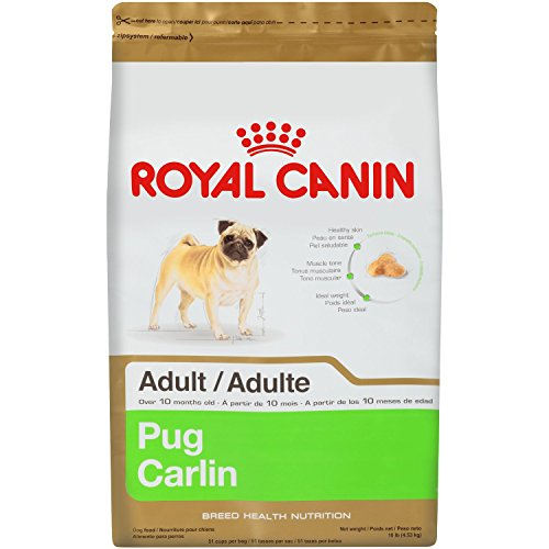 Royal Canin 10-Pound, Dry Dog Food for Pug (Best Dog Food For Pugs)