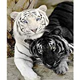 "Yumeart Diamond Painting Cross Stitch Black and White Tiger Needlework Mosaic Embroidery Hobbies Craft Home Decor 30x40cm(12x16"")"