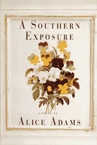 book cover of A Southern Exposure