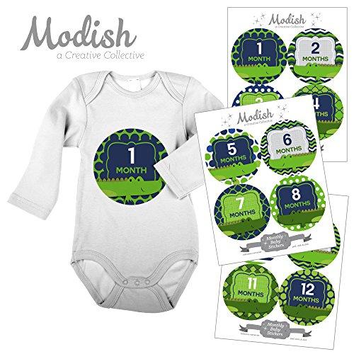 12 Monthly Baby Stickers, Alligators, Boy, Baby Belly Stickers, Monthly Onesie Stickers, First Year Stickers Months 1-12, Blue, Navy Blue, Green, Lime Green, Baby Boy