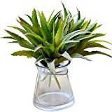 kissing tomatoes - Conjugal Bliss 2 Branch Father's Day Small Gift Lot Of Succulent Plants Aloe Vera Pineapple Leaf Tall Imitation Artificial Flowers Household Holiday Party Decorates Bridal Flower Bouquet (green)