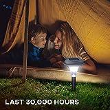 GardenBliss Best Solar Lights for Outdoor