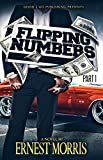 Free eBook - Flipping Numbers PT 1