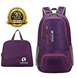 Cheap PANBAO Packable Backpack Lightweight Travel Hiking Backpack Daypack with Rain Cover (Purple)