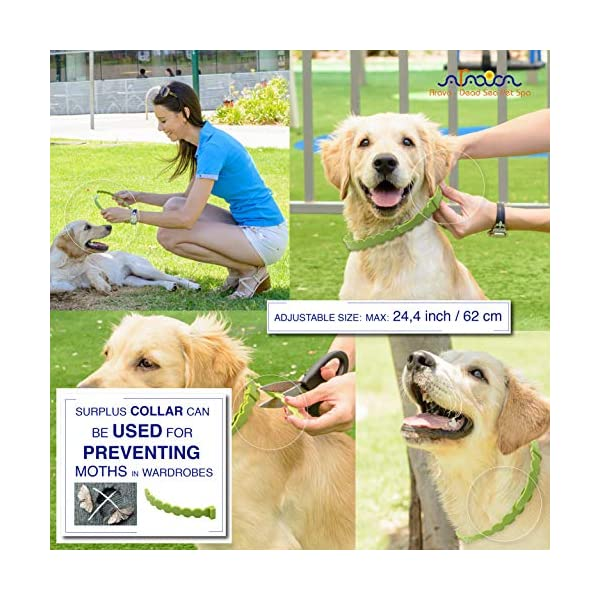 Arava Flea & Tick Prevention Collar - for Dogs & Puppies - Length-25'' - 11 Natural Active Ingredients - Safe for Babies & Pets - Safely Repels Pests - Enhanced Control & Defense - 6 Months Protection 8
