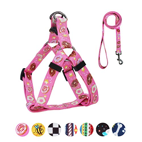 QQPETS Dog Harness Leash Set, Adjustable Heavy Duty No Pull Halter Harnesses for Small Medium Breed Dogs, Back Clip, Anti-Twist, Perfect for Walking (S(14