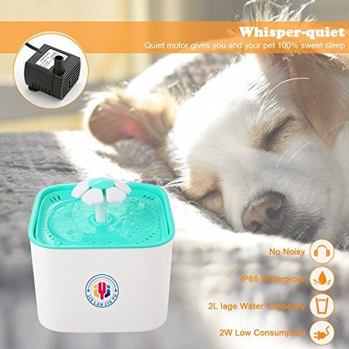 Pet Water Fountain Cat's Dogs Water Dispenser Drinking Fountain 2L Super Quiet Flower Automatic Electric Water Bowl with 2 Replacement Filters for Dogs Cats Birds and Small Animal (BlueMain) by JIALANJIUYU (Image #4)