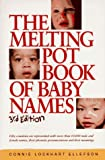 Melting Pot Book of Baby Names, Connie L. Ellefson, 1558703624