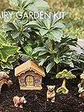 Essential Garden Fairy Garden Kit~ BABY BEARS & CABIN SET ~ 7 Pc Figure Set