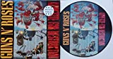 "Guns N' Roses "" Appetite For Destruction "" ULTRA RARE PICTURE DISC Vinyl LP { Banned Cover }"