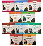 Best Incense Cones - Aromatika Back Flow Natural Incense Cones 12 Packets Review