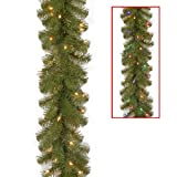 Amazon Price History for:National tree 9 Foot by 10 Inch North Valley Spruce Garland with 50 Battery Operated Dual Color LED Lights (NRV7-302LD-9AB1)