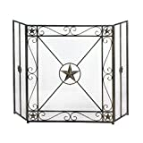 Accent Plus Decorative Fireplace Screens, Western Antique Iron Screen For Fireplace