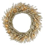 Vickerman Pre-lit Champagne Tinsel Artificial Wreath with 50 Clear Lights, 30 Inch