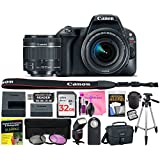 Canon EOS Rebel SL2 24.2 MP Digital SLR 1080p Camera (Wi-Fi, Bluetooth & NFC) Body, Canon EF-S 18-55mm 4-5.6 IS STM Lens with Deluxe Camera Works Accessory Bundle & 32GB High-Speed Memory Card