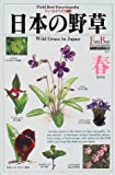 日本の野草 春 (フィールドベスト図鑑)