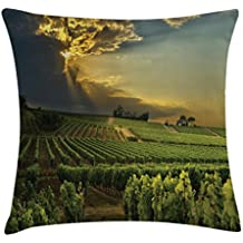 Ambesonne Winery Throw Pillow Cushion Cover, Sunset over the Vineyards of the South of France Sunbeams Cloudscape Picture, Decorative Square Accent Pillow Case, 28 X 28 Inches, Green Yellow Gray