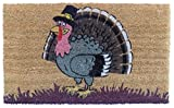 Imports Decor Turkey Vinyl Backed Coir Doormat, 30 by 18 by 1/2''