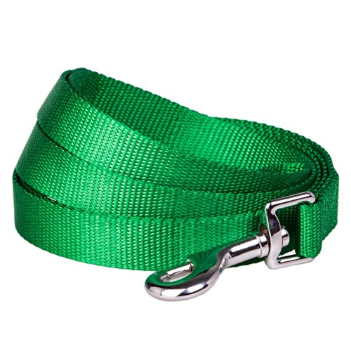 Blueberry Pet 3/4-inch by 5-Feet Better Basic Solid Dog Leash in Light Emerald Green, Leashes for Medium Dog