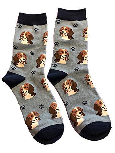 Beagle Dog Breed Socks Unisex Sock Daddy by E&S Pets - Light Blue