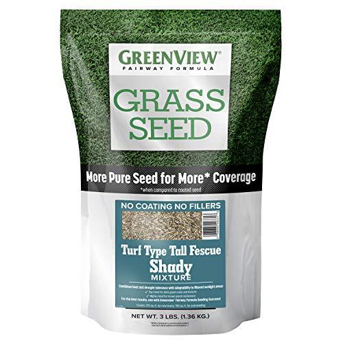 (GreenView 2829349 Fairway Formula Grass Seed Turf Type Tall Fescue Shady Mixture - 3 lb.)