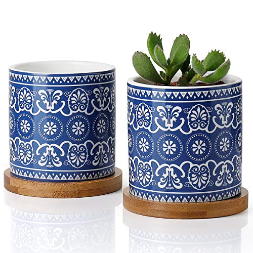 Greenaholics Succulent Plant Pots - 3 Inch Cylindrical Ceramic Planter for Cactus, Succulent Planting, with Drainage Hole, Bamboo Trays, Set of 2, Mandala Blue