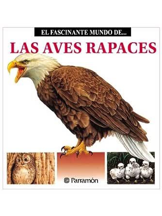 Las Aves Rapaces eBook: Julivert, Maria Àngels: Amazon.es: Tienda Kindle