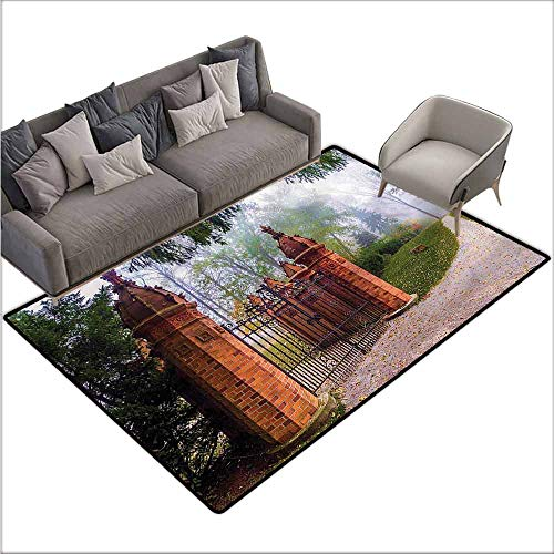 Printed Mats for Children Bedroom Antique,Brick Wall Entrance Foggy 64