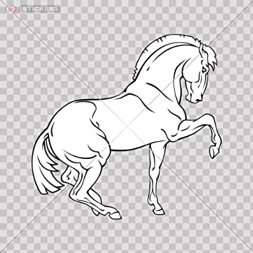 Amazon.com: Decals Horse Galloping Color Print (8 X 7.8 Inch) X4c54 ...