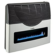 Direct Vent Propane Wall Heater with Room Thermostat, Clean Gas Energy | Indoor Home, Office, Garage | Easy Installation