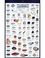 Mac's Field Guides: Northwest Coastal Invertebrate