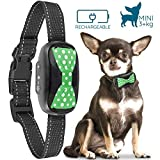 Best Citronella Bark Collars - GoodBoy Humane Bark Collar for Small Dogs Review
