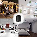 Foldable LED Ceiling Spotlight,Black Metal Cylinder Wall Light Small and Delicate Floodlight for Living Room Bedroom Study