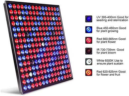 MAIICY Led Grow Light, Full Spectrum 45W 225 LEDs Grow Lights for Indoor Plants Plant with IR Red Blue Bulbs Grow Lamps Hanging Kit for Fruit Growth Flowers Veg Bonsai Plants Seeding