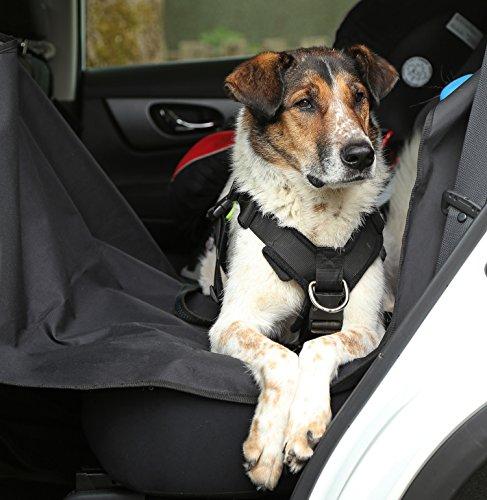 ORIGINAL PetsN'all SITZBEZUG, für AUTO, Fahrzeug, ROBUST, WASSERDICHT, HOCHWERTIGER Sitzbezug für Hunde, UNIVERSAL PASSFORM, Alternativ für UMZUG u. TRANSPORT, SITZSCHUTZ (Farbe Schwarz) (152x147cm)