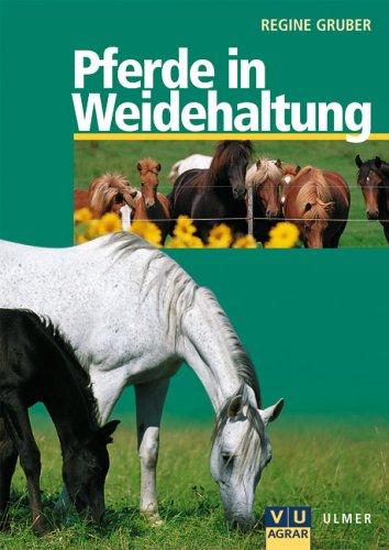 Pferde in Weidehaltung