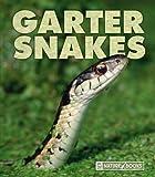Garter Snakes, Mary Ann McDonald, 1592966330